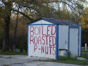 boiled-pnuts