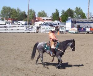 Mounted Cowboy 007