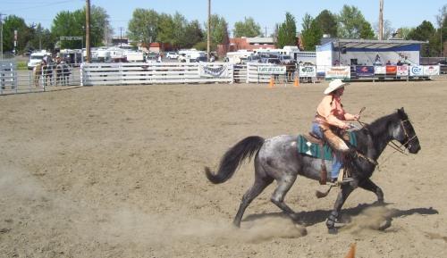 Mounted Cowboy 008