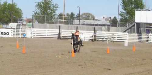 Mounted Cowboy 010