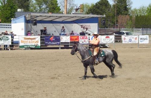 Mounted Cowboy 011